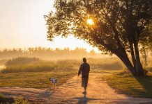 How Morning Walks Can Improve Well-Being